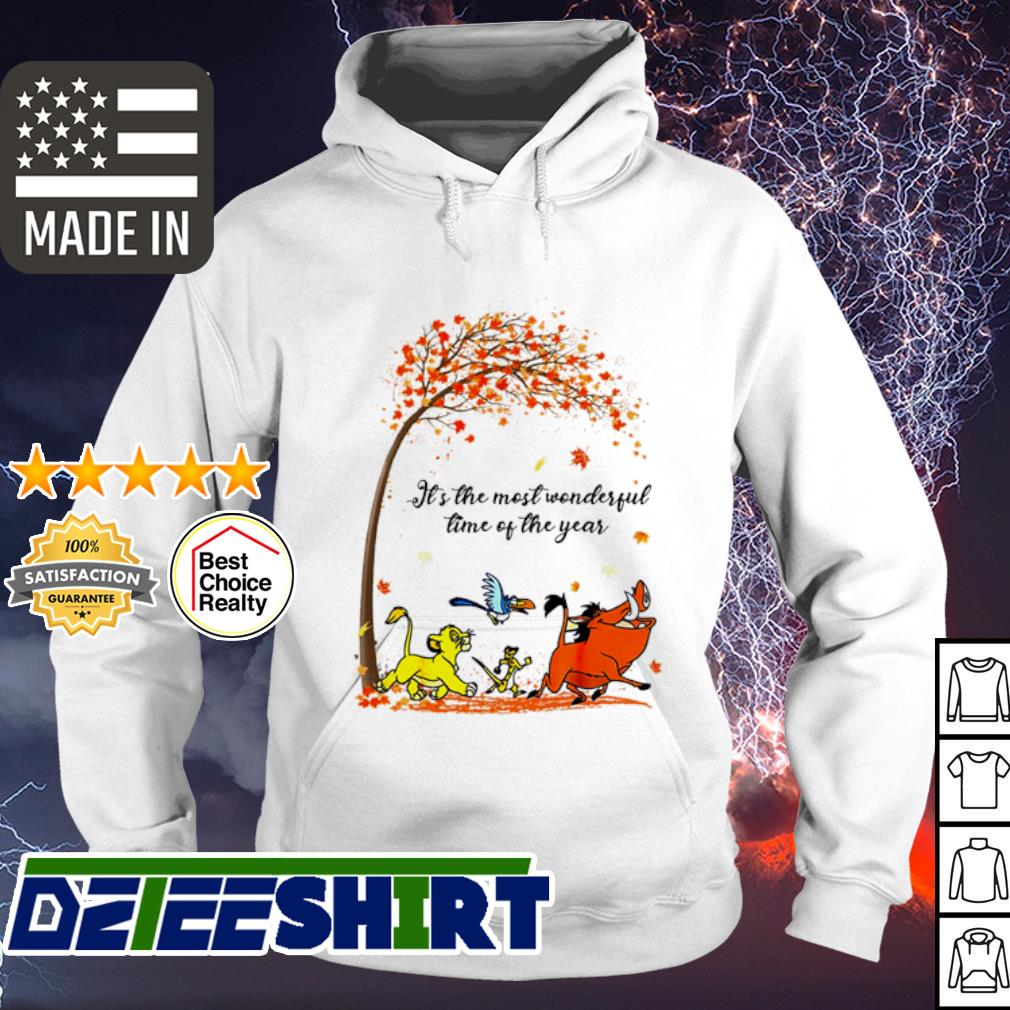 Hakuna Matata It's the most wonderful time of the year s hoodie
