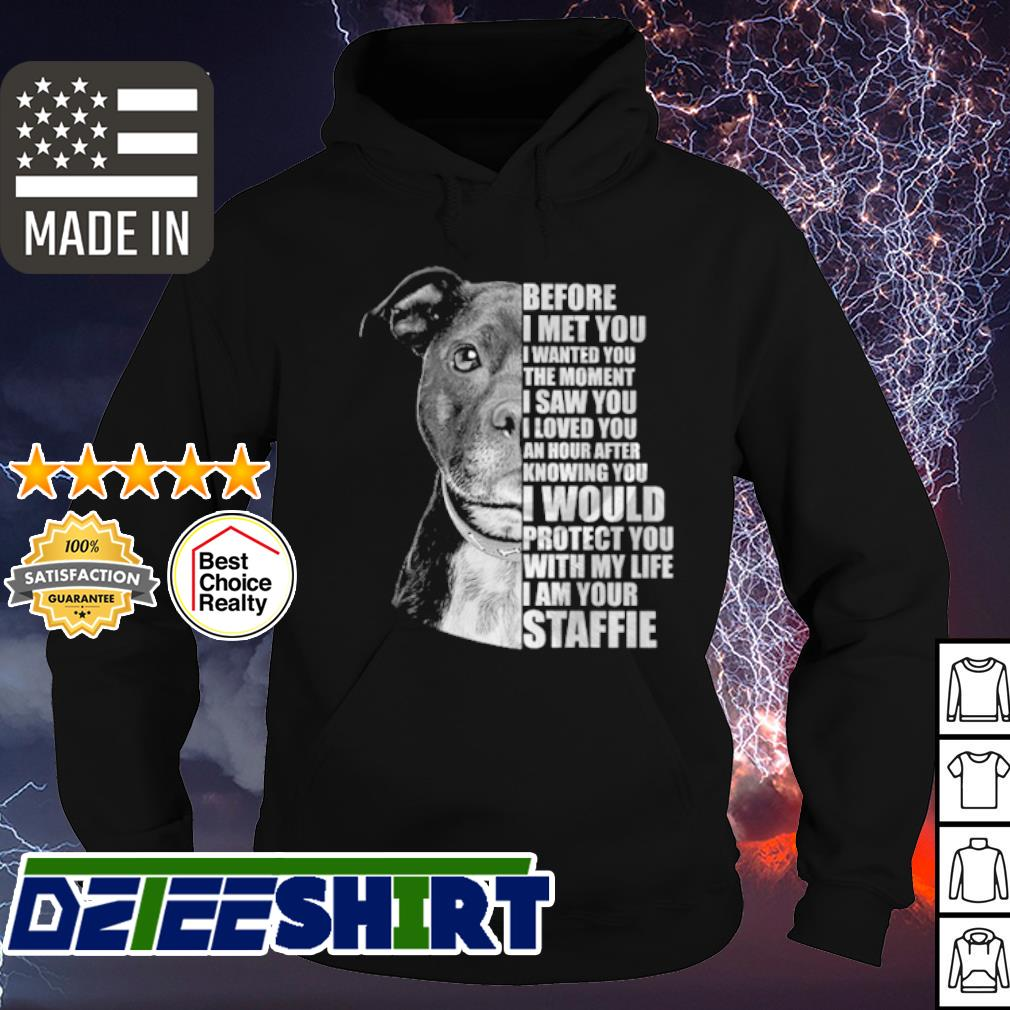 Pitbull before I met you I wanted you the moment I saw you s hoodie