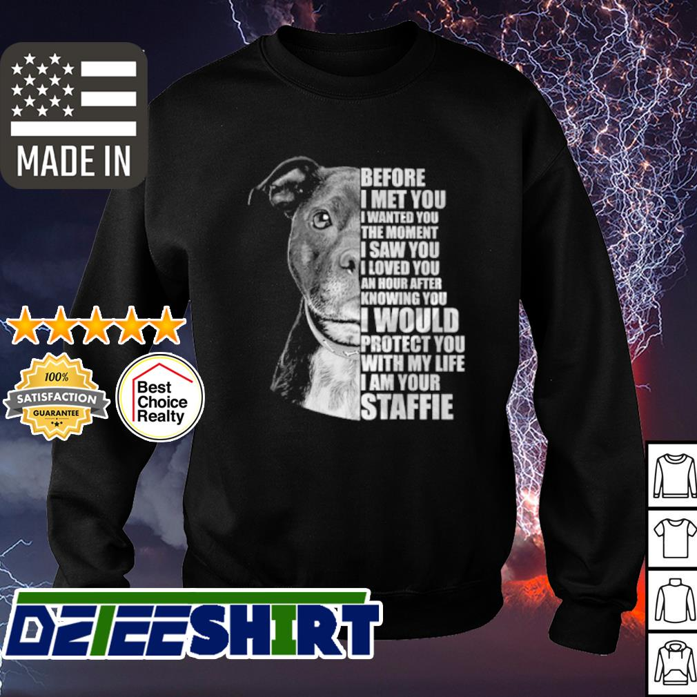 Pitbull before I met you I wanted you the moment I saw you s sweater