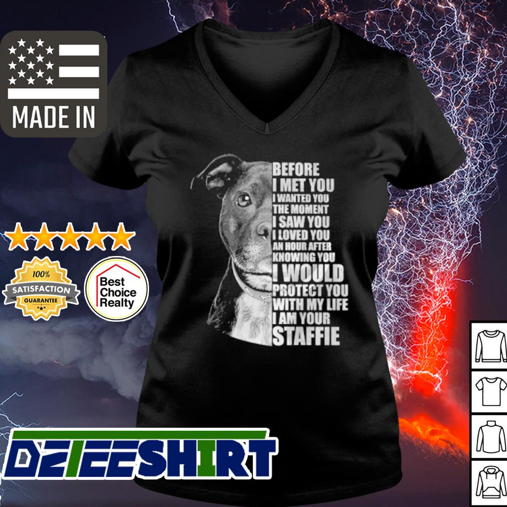 Pitbull before I met you I wanted you the moment I saw you s v-neck t-shirt